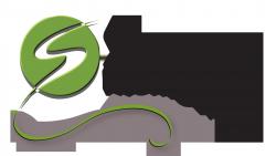 Synergy Logo-15